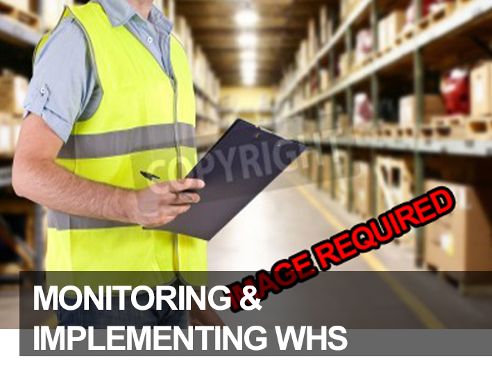 Monitoring Implementing WHS